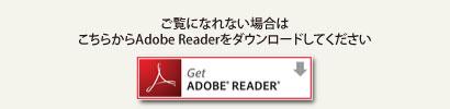 Adobe Reader�������?��